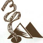 5DUS Logo